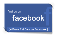 4 Paws on Facebook